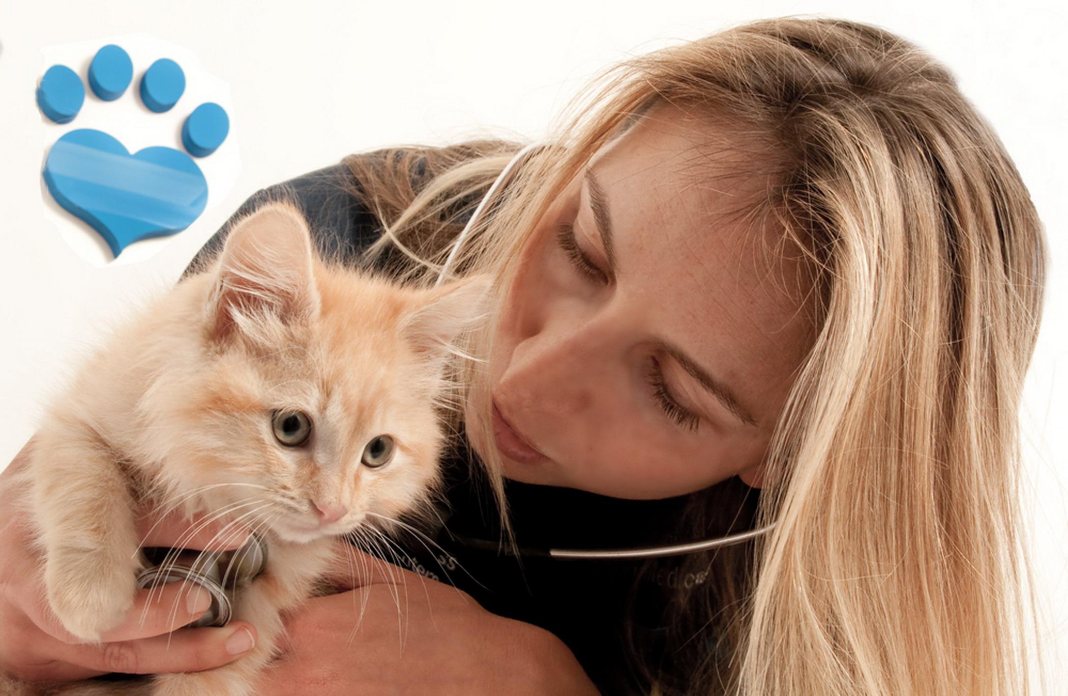 Dr.-Annie---exam-cat_MG_8363