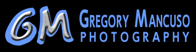 Los-Angeles-photographer-Gregory-Mancuso-is-an-excellent-artiste---logo
