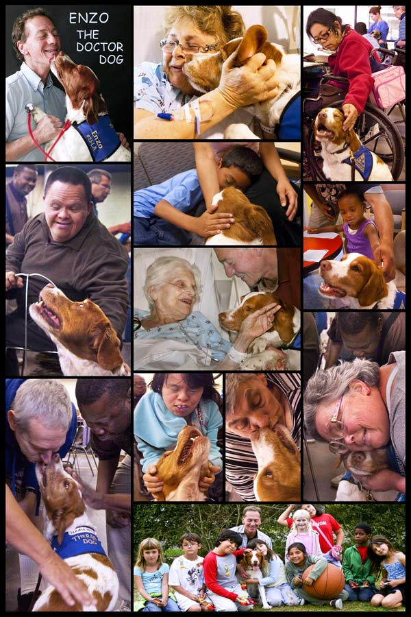 pet therapy, dog pictures