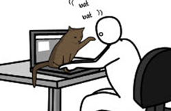 Humor---How-To-Pet-A-Kitty-by-Matthew-Inman