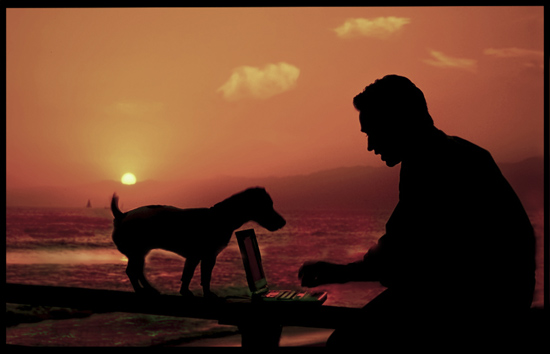 laptop,dog,-ocean,newsletter