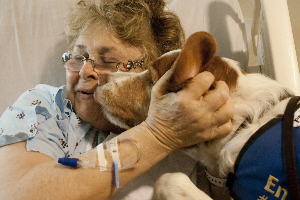 http://gregorymancuso.com/wp-content/uploads/2011/04/therapy-dog-hospital-patient-1024x682.jpg