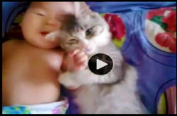 Video | Baby And Cat In Snuggling Nirvana