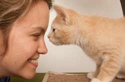 los-angeles-animal-rescue-group-with-cat-at-adoption-center