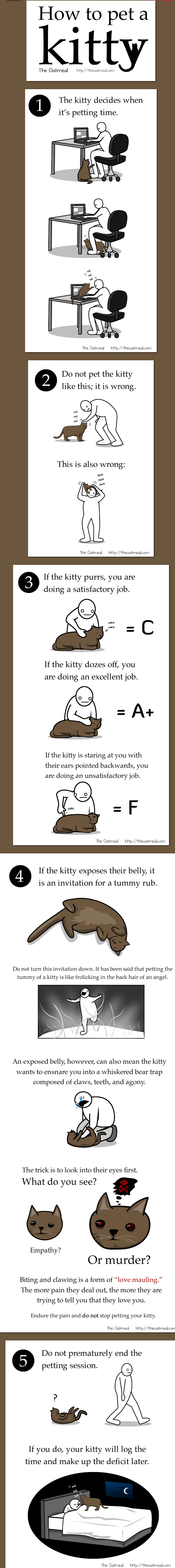 How to pet a kitty by Matthew Inman of the Oatmeal, funny cat comic