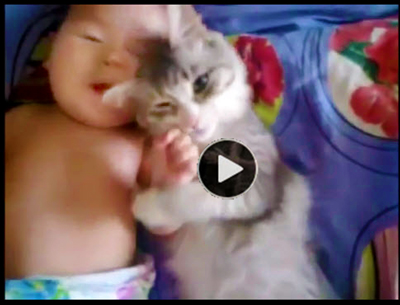 Cute-video-of-cat-and-baby-snuggling-together-in-bed