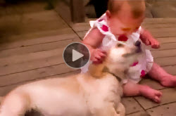 Very-cute-video-of-a-puppy-and-baby-hugging,-kissing-and-playing-with-each-other t