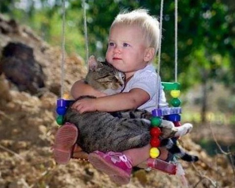 Photography of babies thriving and having fun with their pets - 3