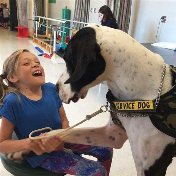 Child-Bella-and-great-dane-service-dog-George-helping-her-walk-without-crutches